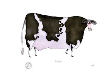 Funny Cow Cartoon Print - Friesian